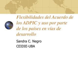 Flexibilidades del Acuerdo de los ADPIC y uso por parte  de los pa ses en v as de desarrollo