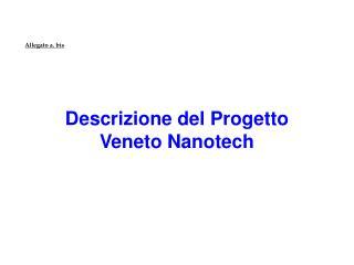 Descrizione del Progetto  Veneto Nanotech