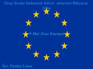 Grup colar Industrial Jidvei- structura Balcaciu                                            Alba