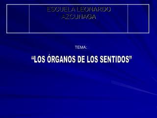 LOS  RGANOS DE LOS SENTIDOS