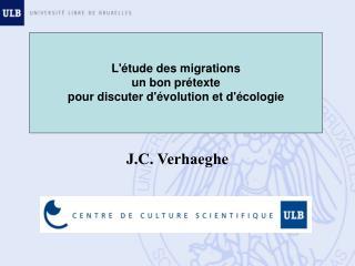 J.C. Verhaeghe