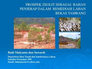 Budi Mulyanto dan Suwardi Departmen Ilmu Tanah dan Sumberdaya Lahan,  Fakultas Pertanian, IPB Email: bdmulyantoyahoo