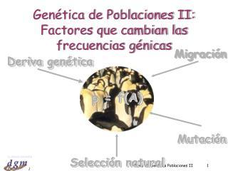 Tema 18: Gen tica Poblaciones II