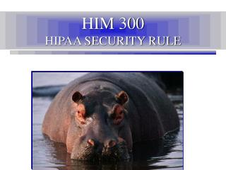 HIM 300 HIPAA SECURITY RULE