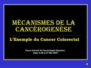 M canismes de la Canc rogen se   L Exemple du Cancer Colorectal