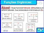 Fun  es Org nicas:
