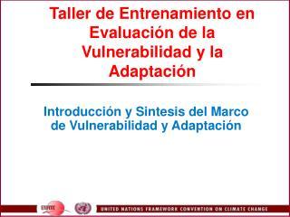 Taller de Entrenamiento en Evaluaci n de la Vulnerabilidad y la Adaptaci n