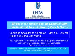 Le nides Castellanos Gonz lez,  Mar a E. Lorenzo  Nicao and Berta Lina Mui o