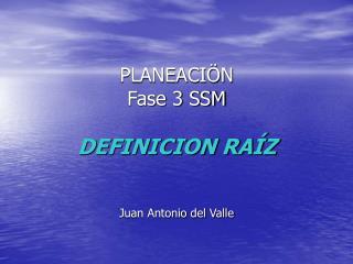 PLANEACI N Fase 3 SSM  DEFINICION RA Z    Juan Antonio del Valle