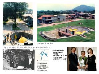 TEPEPAN I  M xico D.F.  1983-2003  UNITED NATION AWARD MIAMI 1991