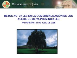 RETOS ACTUALES EN LA COMERCIALIZACI N DE LOS ACEITE DE OLIVA PROVINCIALES VALDEPE AS, 21 DE JULIO DE 2006
