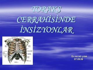 TORAKS CERRAHISINDE  INSIZYONLAR