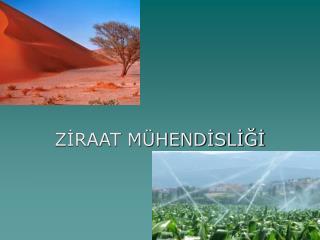 ZIRAAT M HENDISLIGI