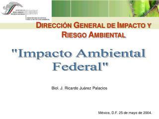DIRECCI N GENERAL DE IMPACTO Y RIESGO AMBIENTAL