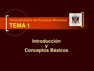 Termodin mica de Procesos Minerales TEMA 1