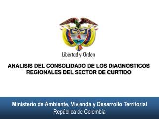 ANALISIS DEL CONSOLIDADO DE LOS DIAGNOSTICOS  REGIONALES DEL SECTOR DE CURTIDO