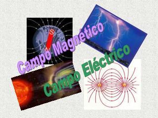 Campo Magn tico