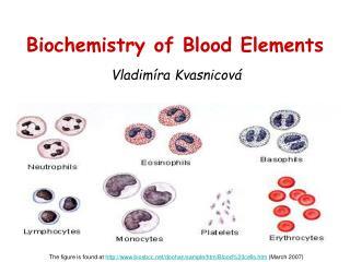 Biochemistry of Blood Elements