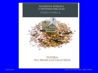 MELBA LUZ CALLE MEZA, UNED-TUDELA