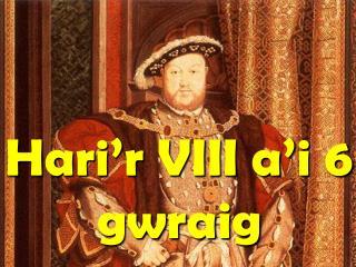 Ganwyd Hari ar 15 Mehefin 1491.  Bu farw ei frawd Arthur, felly Hari oedd y brawd nesaf i fod yn Frenin ar Lloegr.