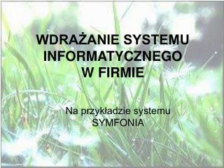 WDRAZANIE SYSTEMU INFORMATYCZNEGO W FIRMIE