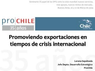 Promoviendo exportaciones en tiempos de crisis internacional