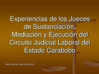 Experiencias de los Jueces  de Sustanciaci n, Mediaci n y Ejecuci n del  Circuito Judicial Laboral del Estado Carabobo