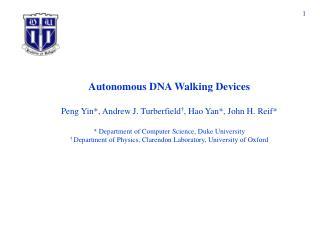 Autonomous DNA Walking Devices   Peng Yin, Andrew J. Turberfield , Hao Yan, John H. Reif   Department of Computer Scienc