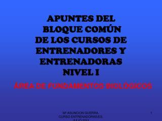APUNTES DEL  BLOQUE COM N DE LOS CURSOS DE ENTRENADORES Y ENTRENADORAS NIVEL I