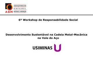 6  Workshop de Responsabilidade Social    Desenvolvimento Sustent vel na Cadeia Metal-Mec nica no Vale do A o