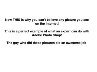 Now THIS is why you cant believe any picture you see on the Internet  This is a perfect example of what an expert can do