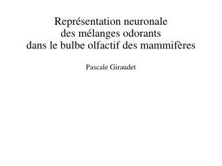Repr sentation neuronale  des m langes odorants  dans le bulbe olfactif des mammif res  Pascale Giraudet