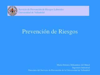 Prevenci n de Riesgos