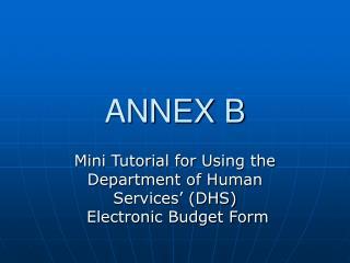 ANNEX B