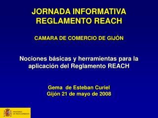 JORNADA INFORMATIVA REGLAMENTO REACH  CAMARA DE COMERCIO DE GIJ N   Nociones b sicas y herramientas para la aplicaci n d
