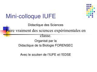Mini-colloque IUFE