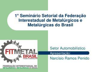1  Semin rio Setorial da Federa  o Interestadual de Metal rgicos e Metal rgicas do Brasil