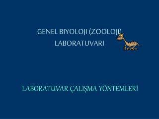 GENEL BIYOLOJI ZOOLOJI LABORATUVARI