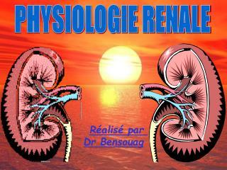 Physiologie R
