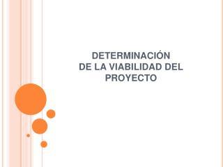 DETERMINACI N  DE LA VIABILIDAD DEL PROYECTO