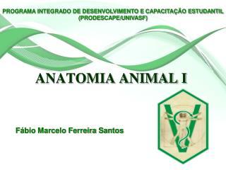 ANATOMIA ANIMAL I