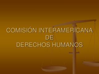 COMISI N INTERAMERICANA DE  DERECHOS HUMANOS