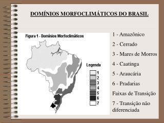 1 - Amaz nico 2 - Cerrado 3 - Mares de Morros 4 - Caatinga 5 - Arauc ria 6 - Pradarias Faixas de Transi  o 7 - Transi  o