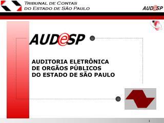 AUDITORIA ELETR NICA DE ORG OS P BLICOS    DO ESTADO DE S O PAULO