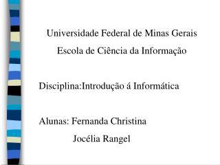 Universidade Federal de Minas Gerais Escola de Ci ncia da Informa  o  Disciplina:Introdu  o   Inform tica  Alunas: Ferna