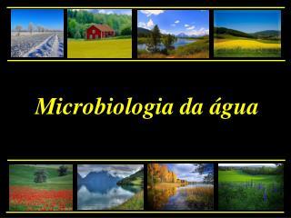 Microbiologia da  gua