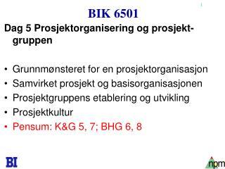 BIK 6501