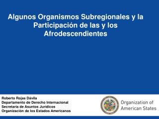 Algunos Organismos Subregionales y la Participaci n de las y los Afrodescendientes