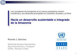 Ricardo J. S nchez   Oficial de Asuntos Econ micos  rea Infraestructura y Transporte  CEPAL, Naciones Unidas