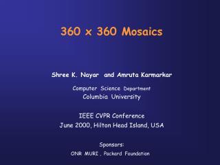 360 x 360 Mosaics